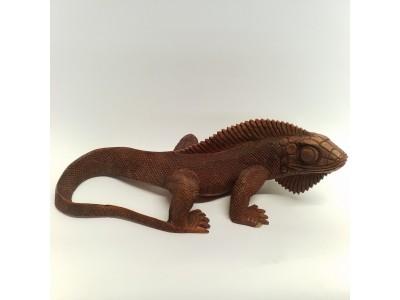 Medinė iguana