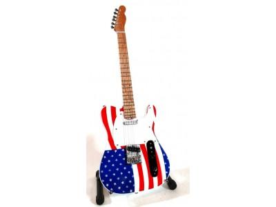 Gitaros mini modelis - Bruce Springsteen