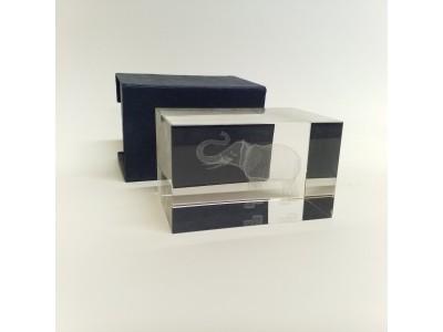Stiklo kubas su 3D  dramblio dekoracija