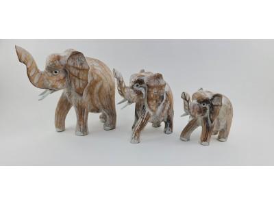 Medinių dramblių šeima