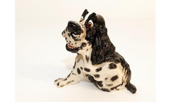 Šuo - anglų springerspanielis