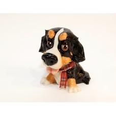 Šuo - berno zenenhundas