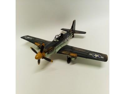 Amerikietiško lėktuvo modelis
