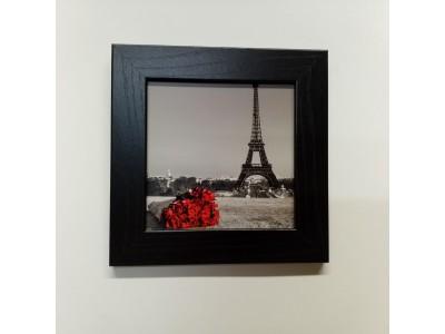 """Paveikslas """"Paryžius"""""""